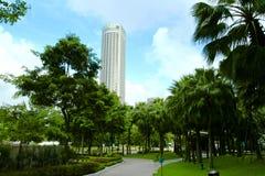 Esverdeie a área dos escritórios imagem de stock royalty free