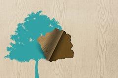 Esverdeie a árvore na textura de madeira Fotos de Stock Royalty Free