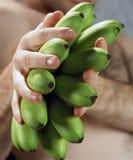 Esverdeie a composição artística das bananas Imagens de Stock