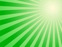 Esverdeie o fundo do sol Imagens de Stock Royalty Free