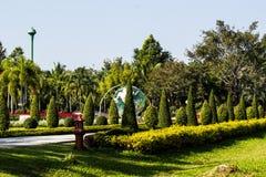Esverdeie o gramado no parque da cidade Imagem de Stock