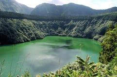 Esverdeie o lago Imagem de Stock Royalty Free
