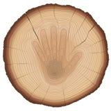 Età di legno di protezione di natura del segno della mano di arresto degli anelli Fotografia Stock Libera da Diritti
