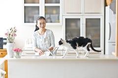 Et chat femelle d'animal familier Photos libres de droits