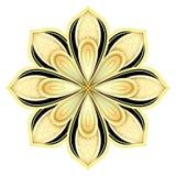 Or et mandala fleuri décoratif de noir beau Images libres de droits