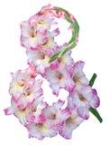 Et-tecken Royaltyfria Bilder
