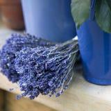 Etails of fresh, medicinal herbs Stock Photos