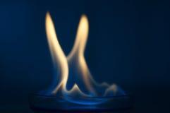 Etanolu ogień w szklanym lab talerzu Fotografia Royalty Free
