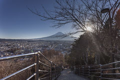 Etapa de Fuji Shureito fotografia de stock royalty free
