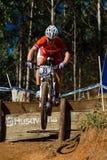Etapa do vôo da raça do cavaleiro de MTB   Fotografia de Stock