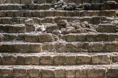 Etapas arruinadas antigas de um templo maia fotografia de stock royalty free