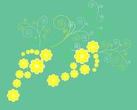 Etapas da flor ilustração stock