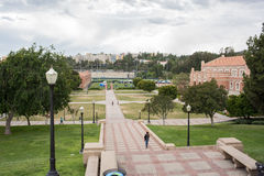 Etapas de Janss no UCLA Imagem de Stock
