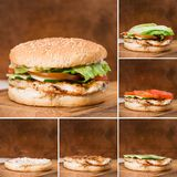 Etapas de la colección de hamburguesa tradicional foto de archivo