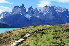 Patagonia Scenics Imagens de Stock
