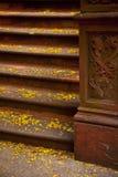 Etapas de pedra em New York City Imagens de Stock Royalty Free
