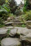 Etapas de pedra na mola verdejante Fotografia de Stock
