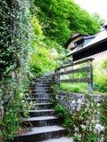 Etapas de pedra na natureza em Áustria bonita foto de stock