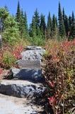 Etapas de pedra no campo imagens de stock