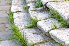 Etapas de pedra velhas com grama Fotos de Stock Royalty Free