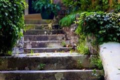 Etapas de pedra velhas em um jardim Foto de Stock Royalty Free