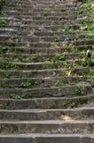Etapas de uma escada velha Imagens de Stock