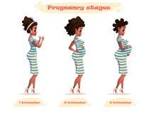 Etapas del ejemplo del vector del embarazo de la mujer embarazada negra afroamericano embarazada Cambios en un cuerpo del ` s de  Fotografía de archivo libre de regalías