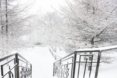 Etapas do parque no inverno Imagem de Stock