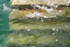 Etapas e água 1 Fotos de Stock Royalty Free