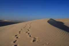 Etapas na areia Fotografia de Stock Royalty Free