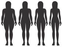 Etapper av kvinnas vikt vektor illustrationer