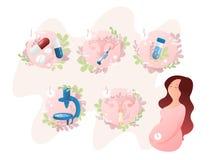 Etapperna av insemination IVF In vitro steg-för-steg metod för befruktning royaltyfri illustrationer