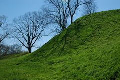 Etawah Mounds Stock Photo