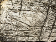 Etched, Weathered Rock Texture. Texture in old, etched and weathered light-colored rock royalty free stock image