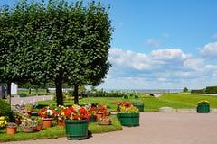 Eterhof, flower garden in the Lower Park Royalty Free Stock Image