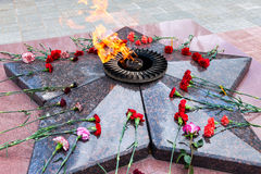 Eternal flame and flowers Royalty Free Stock Photography