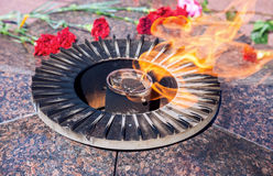 Eternal flame and flowers Royalty Free Stock Images