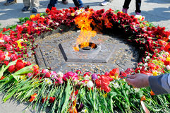 The Eternal Flame Royalty Free Stock Image