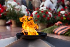 The Eternal Flame memorial. Eternal Flame memorial pink flower at Victory day stock image