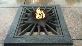 Eternal Flame at the Memorial stock footage