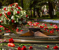 Eternal flame memorial to fallen defenders with carnations around 9 may Stock Photo