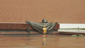 Eternal Flame - Tomb Of The Unknown Soldier stock video footage