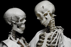 Eternal love. A couple of skeletons embracing and staring at each other Royalty Free Stock Photography