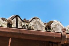 Eternal roof. Asbestos boards. Dangers of cancer. Hazardous waste. Eternal roof. Asbestos boards. Dangers of cancer. Hazardous waste Stock Image