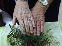 Eternal Symbol of Love. Rings exchanged as a symbol of love and devotion Stock Photo