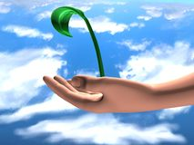 Eternity. Human hand holding a small young plant against sky background Royalty Free Stock Images