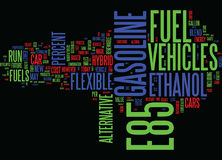 Ethanol And E Fuels Of The Future Text Background  Word Cloud Concept. ETHANOL AND E FUELS OF THE FUTURE Text Background Word Cloud Concept Stock Photo