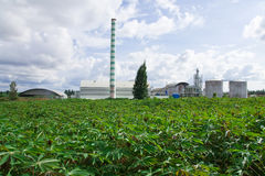 Ethanol factory. In cassava field, Thailand Stock Photography