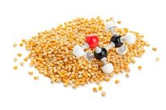 Ethanol från majs Arkivbild