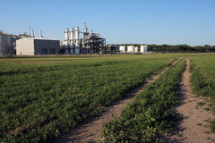 Ethanol Plant in Summer. Disant view of ethanol plant in the midwest in summer with green field of grass or weeds in foreground Stock Photos